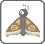 card_moth